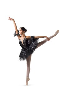 Click for more information about Swan Lake
