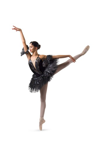 Click to Shop Swan Lake Ballet Costume