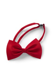 Click for more information about Bow Tie With Strap And Adjuster